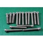 set of 15 primary chaincase screws Goldie B31